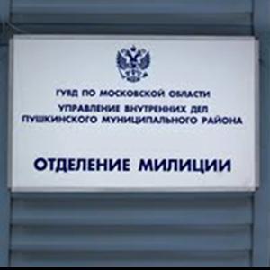 Отделения полиции Тетюшей